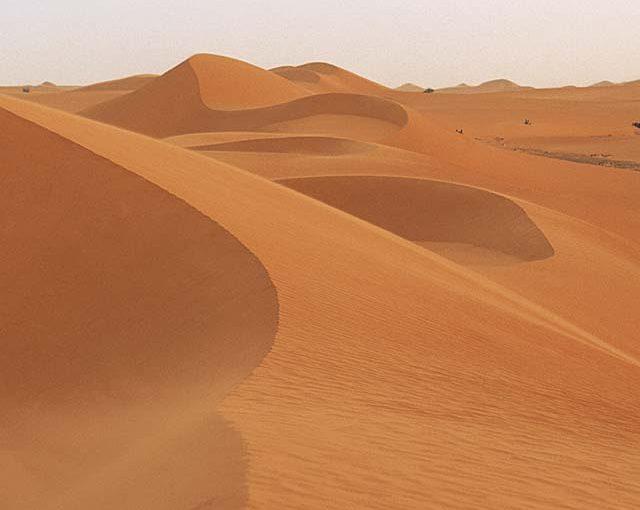 黄砂に吹かれた挙句・・・♬ 2